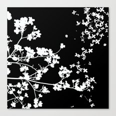 Black Dogwood Canvas Print