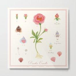 cupcake flower botanical art illustration Metal Print