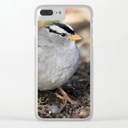 Profile of a White-Crowned Sparrow Clear iPhone Case