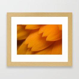Orange Forever Framed Art Print