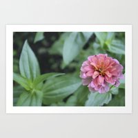 rileigh smirl Art Prints featuring Pink Flower by Rileigh Smirl