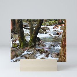 Yosemite Spring Runoff Mini Art Print