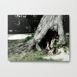 Entryway to the Enchanted Forest Metal Print