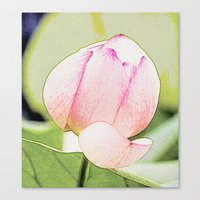 lotus flower Canvas Prints featuring Lotus by Karl-Heinz Lüpke