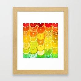 Fruit Madness - Citrus Framed Art Print