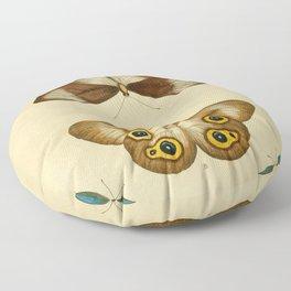 Naturalist Butterflies Floor Pillow