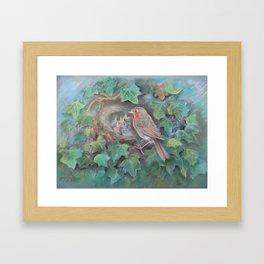 Bird family Robin on the nest Wildlife birds pastel drawing Framed Art Print
