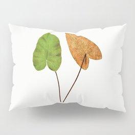 Edward Joseph Lowe - Hemionitis Cordata Pillow Sham