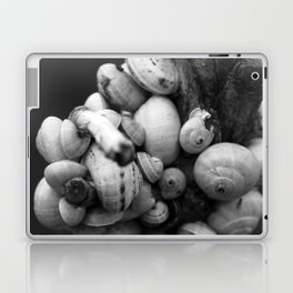 Snails Laptop & iPad Skin