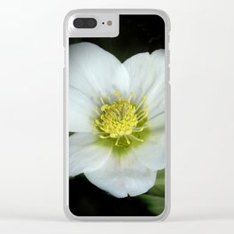 christmasrose on black -2- Clear iPhone Case