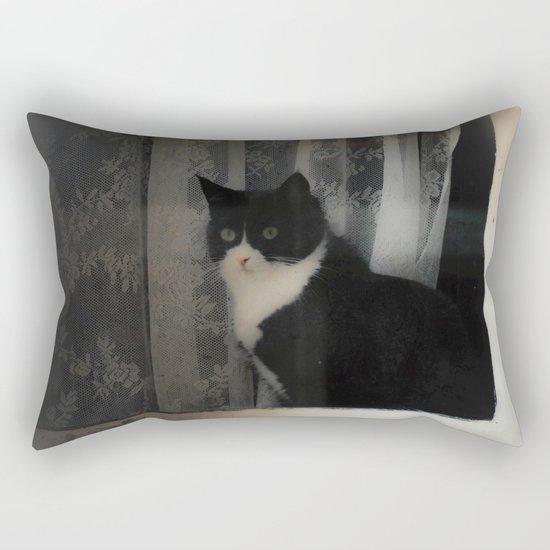 One Cat in the window Rectangular Pillow