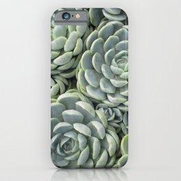 Pale Green Succulent Garden iPhone Case