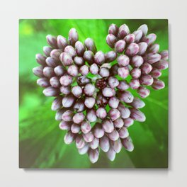 The Love of Nature Metal Print