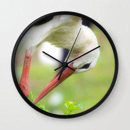 Portrait of a stork in summer Wall Clock