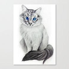 Ojos Azul Canvas Print