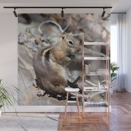 Watercolor Golden-Mantled Ground Squirrel 08, Dunraven Trail, Colorado, Welcome To The Forest Wall Mural