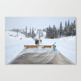 Dogsledding in Yellowknife Canvas Print