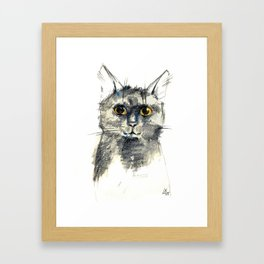 Pencil sketch of the black cat Framed Art Print