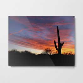 Tucson Tree Metal Print