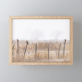 Short-eared Owls Perched on an Old Fence Framed Mini Art Print