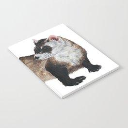 Black-Footed Ferret Notebook
