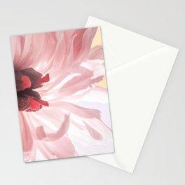 Flower Background Stationery Cards