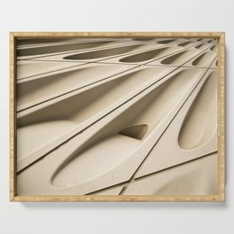 Architectural abstract of the Broad (rhymes with road), Los Angeles, California Serving Tray