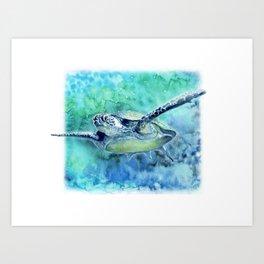 Swimming Turtle In Watercolor Art Print