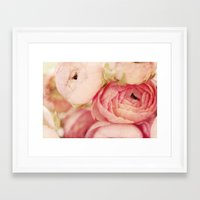 blush Framed Art Prints featuring Blush by Kim Fearheiley Photography