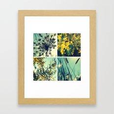 Wander Through Spring II Framed Art Print