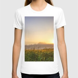 Cloudless sky in the sunlight over a grassy swamp on sunrise T-shirt