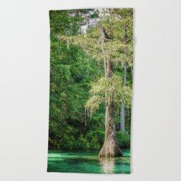 Florida Cypress Tree and Spring Beach Towel