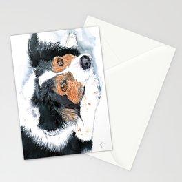 Border Collie Mattie Stationery Cards