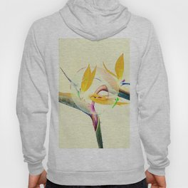 Bird of Paradise Colorful Flowers Art Design Hoody