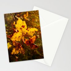 Colors of Fall Stationery Cards