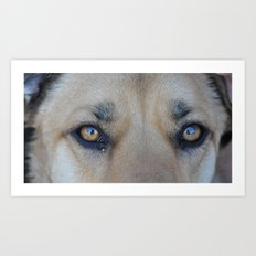Cooper's Eyes (For Devices) Art Print