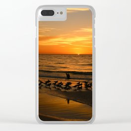 Gulls Gather On The Beach At Sunset Clear iPhone Case
