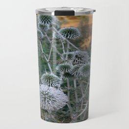 Seed Head Of Leek Flower Allium Sphaerocephalon  Travel Mug