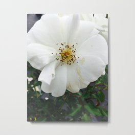 Nothing's perfect Metal Print