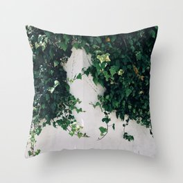 Vibrant Valparaiso Throw Pillow