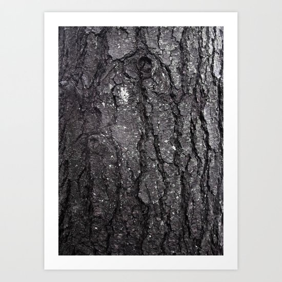 Black Bark Art Print