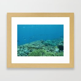 Living reef Framed Art Print