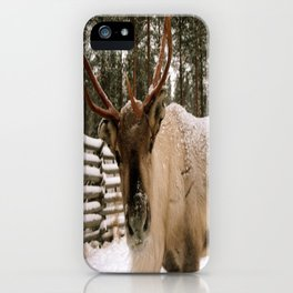 Adorable In The Arctic iPhone Case