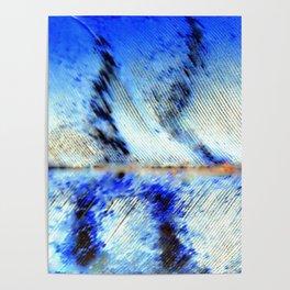 Feathers in Flight | Nadia Bonello Poster