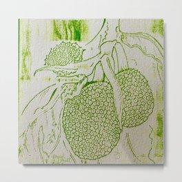 Breadfruit Metal Print