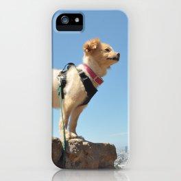 Wonder Dog in San Francisco iPhone Case