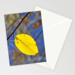 Yellow leaf against blue sky Stationery Cards
