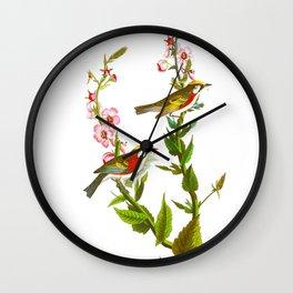 Chestnut Sided Warbler Bird Wall Clock