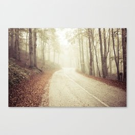 Wood in winter with fog Canvas Print