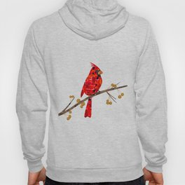 Red Cardinal Collage Hoody